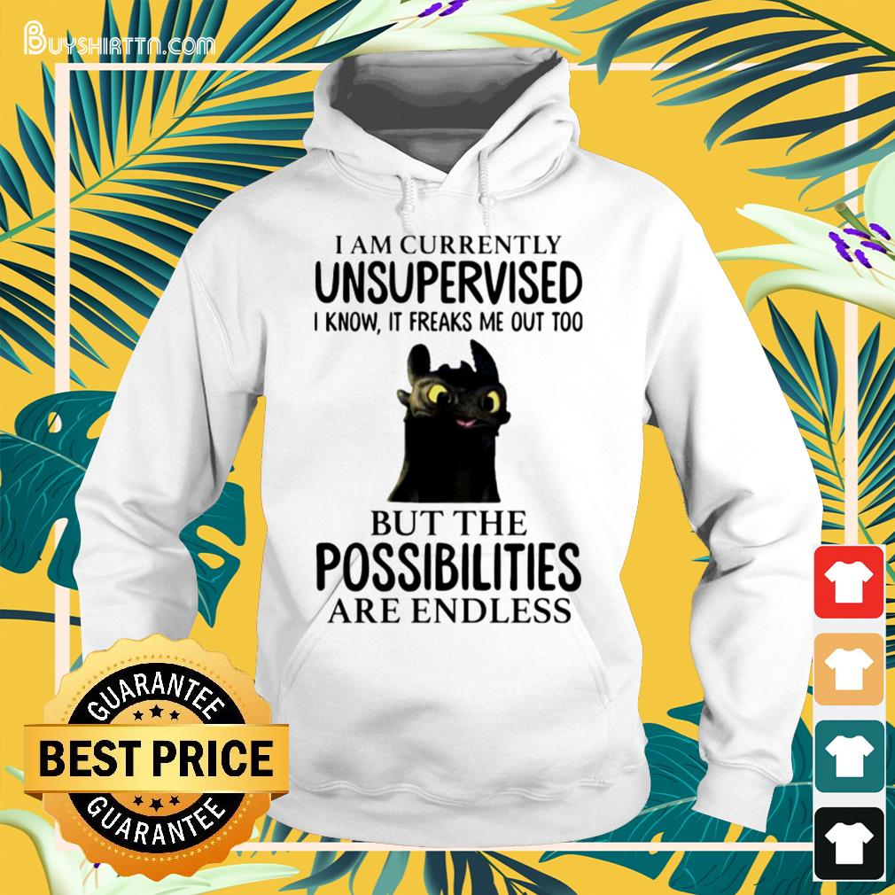 Toothless i'm currently unsupervised i know it freaks me out too Hoodie